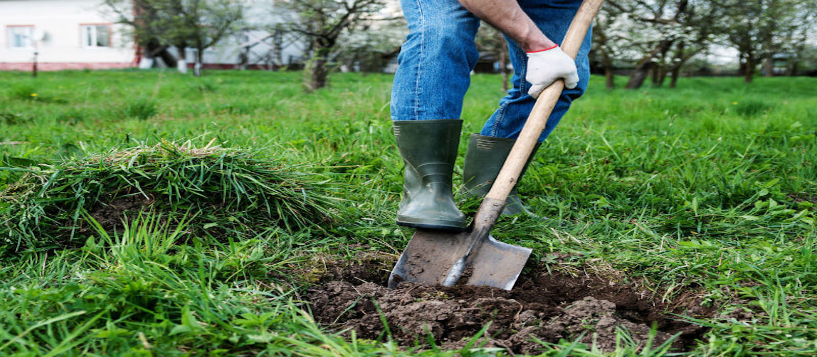 Septic Inspections: What is Involved & Costs